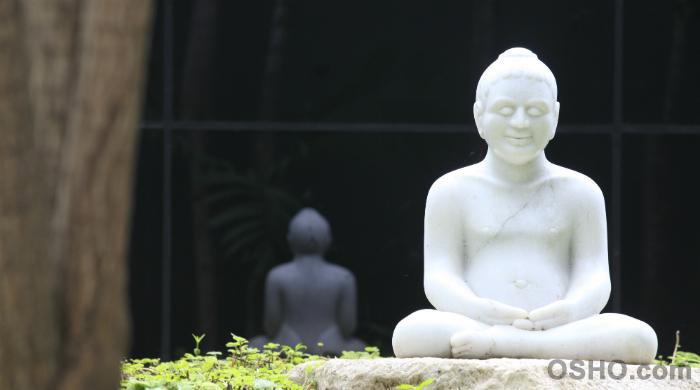 This very body, the Buddha: yes, you.