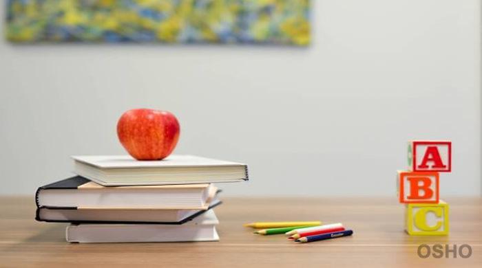 Education: Forward to the Real Basics