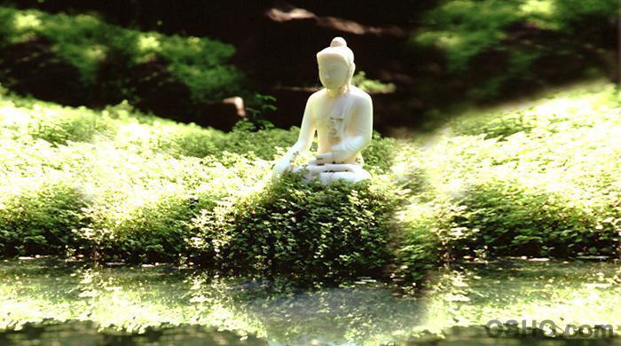 Zorba el Buda